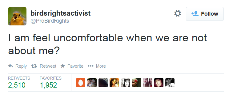 a tweet from birdsrightsactivist (@ProBirdRights) which says: i am feel uncomfortable when we are not about me?
