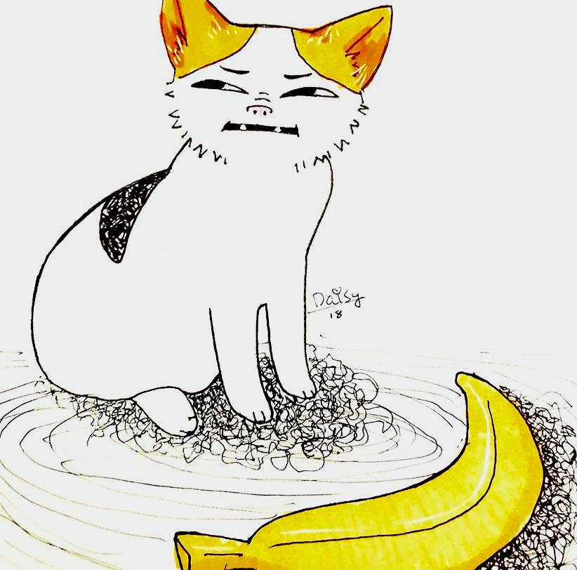 'Cat No Banana' thumbnail